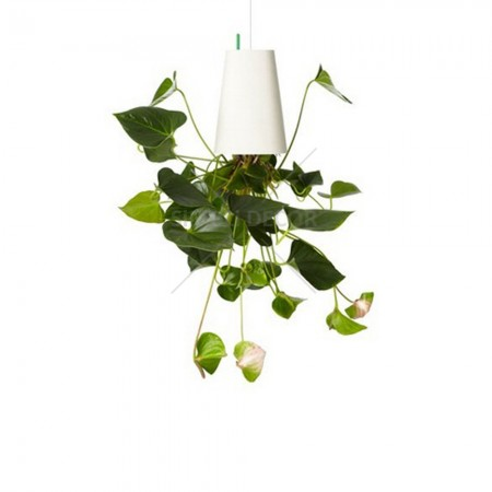 Boskke recycled white